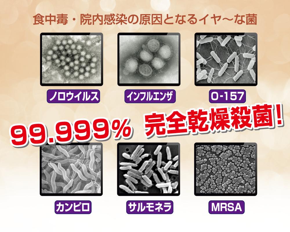 食中毒・院内感染の原因となる嫌な細菌 99.999%完全殺菌 ノロウイルス、インフルエンザ、O-157、カンピロバクター、サルモネラ、MRSA