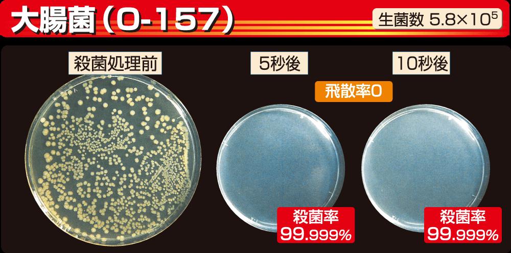 大腸菌(O-157)